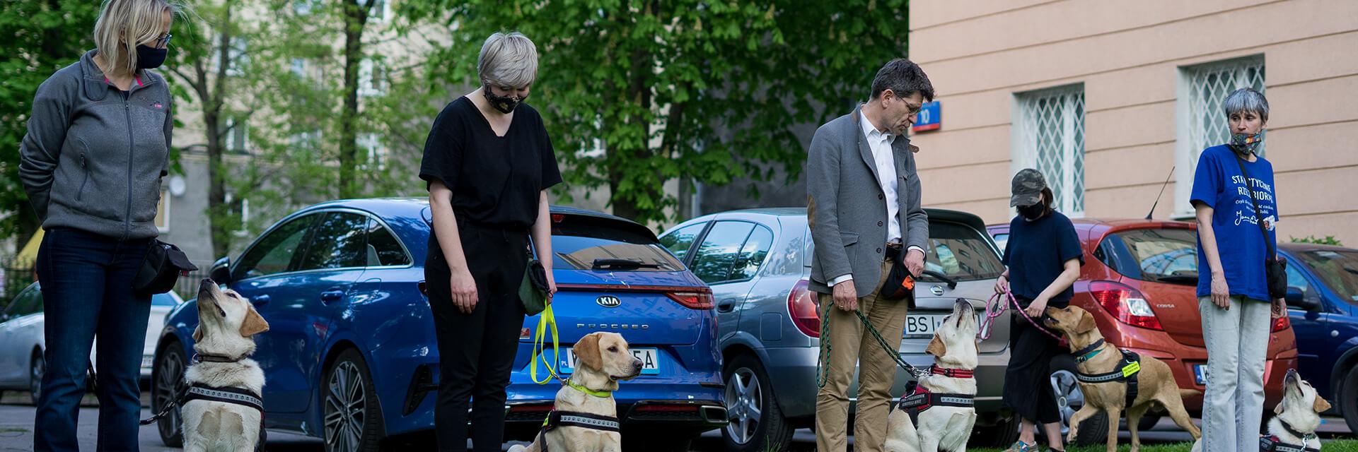 Na parkingu znajduje się piątka wolontariuszy. Obok wolontariuszy siedzi lub stoi pies przewodnik.