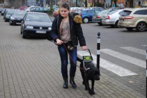 Kobieta idzie po chodniku z psem przewodnikiem