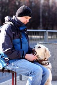 Mężczyzna siedzi na ławce, a obok siedzi pies przewodnik