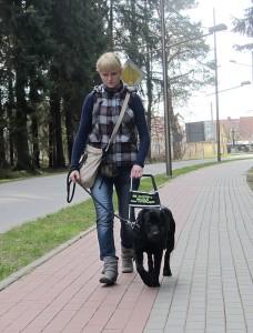Kobieta idzie chodnikiem z psem przewodnikiem.